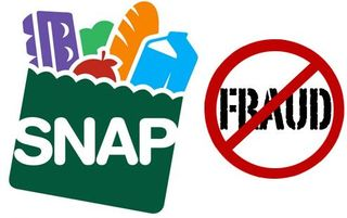 SNAP-Fraud